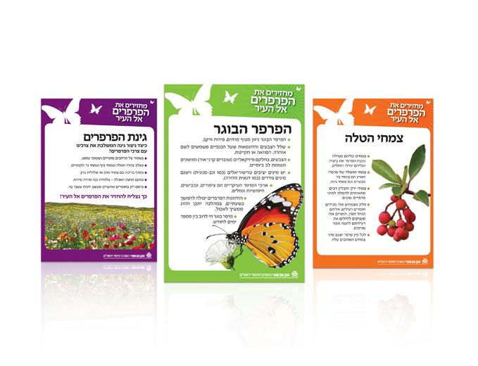 עיצוב פלקט הסבר בתערוכת הפרפרים בגן הבוטאני בירושלים